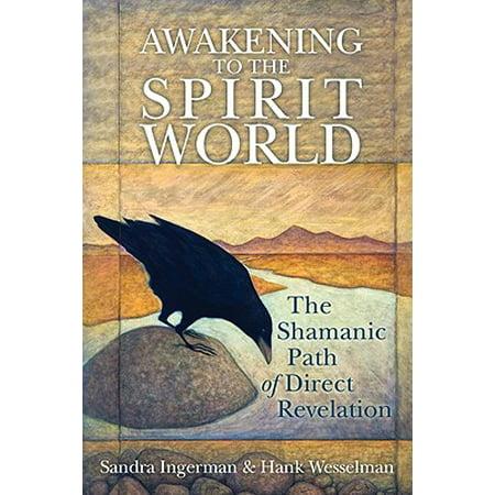 Awakening to the Spirit World : The Shamanic Path of Direct Revelation (The Direct Path)