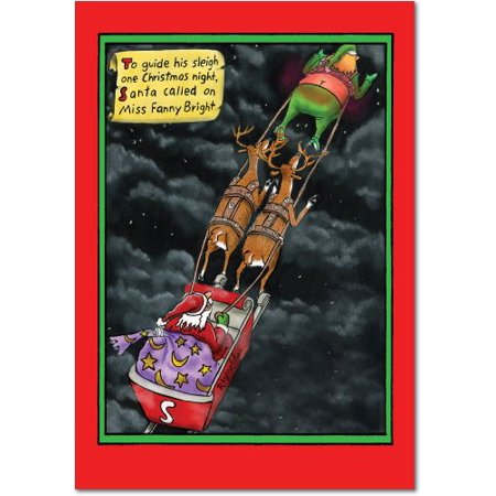B1018 Miss Fanny Bright Reynolds Cartoon' Box Set of 12 Funny Merry Christmas Note Cards with Envelopes by NobleWorks