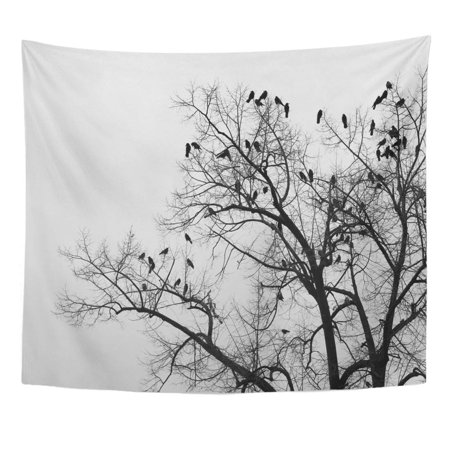 REFRED Black Crows in Trees Darkness Halloween Birds Nest Wall Art Hanging Tapestry Home Decor for Living Room Bedroom Dorm 51x60 inch ()