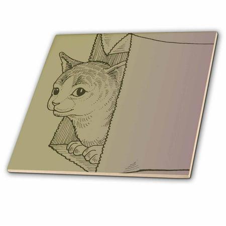 3dRose Happy Cat in a Bag pets animal art - Ceramic Tile, 8-inch Big Cat Art