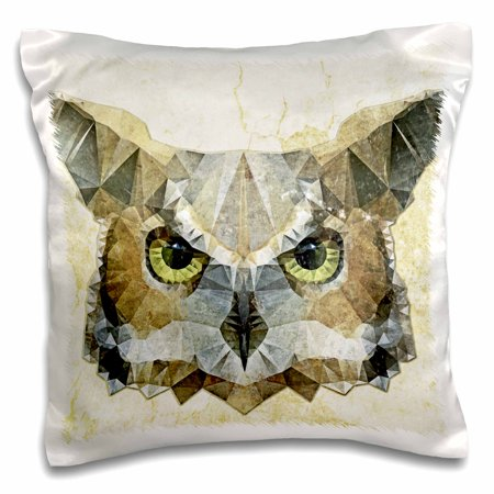 3dRose Abstract Owl - Funky Owl, Pillow Case, 16 by 16-inch