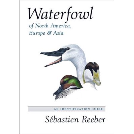 Waterfowl of North America, Europe, and Asia : An Identification (Land Bridge Between Asia And North America)