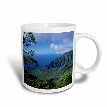 3dRose Kalalau, Kokee SP, Waimea Canyon, Kauai, Hawaii - US12 DPB0089 - Douglas Peebles, Ceramic Mug, 11-ounce