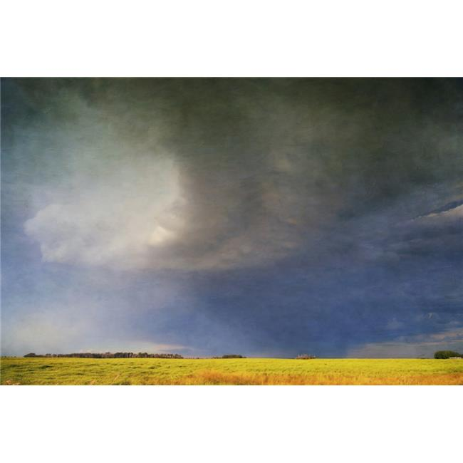 A Curving Gust Front At The Edge of A Summer Thunderstorm - Eckville Alberta Canada Poster Print by Roberta Murray, 38 x 24 - Large - image 1 of 1