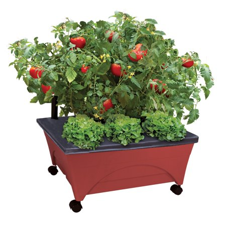 Emsco Bountiful Harvest Self Watering Grow Box