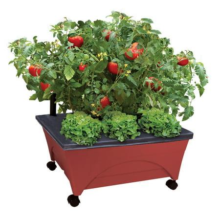 Emsco bountiful harvest self watering grow box for Bountiful storage