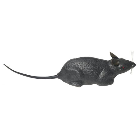 Fun Express - Rat Individual for Halloween - Home Decor - Decorative Accessories - Home Accents - Halloween - 1 - Fun Halloween Decor