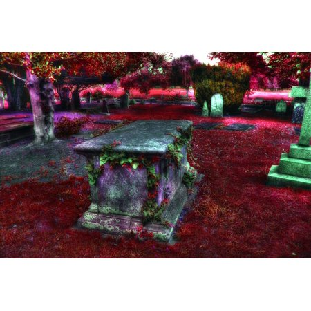 Canvas Print Halloween Graveyard Scary Cemetery Grave Horror Stretched Canvas 32 x 24](Halloween Cemetery Fence For Sale)