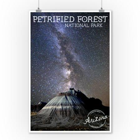 Petrified Forest National Park, Arizona - Painted Desert Night Sky - Lantern Press Photography (9x12 Art Print, Wall Decor Travel Poster) ()