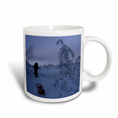 Christmas Snow Scenes (3dRose Christmas Winter scenes at Kj?lihytta, sleigh in the snow, Ceramic Mug,)
