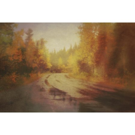 (Textured pinhole style of a wet highway through an autumn forest in the rain alberta canada PosterPrint)