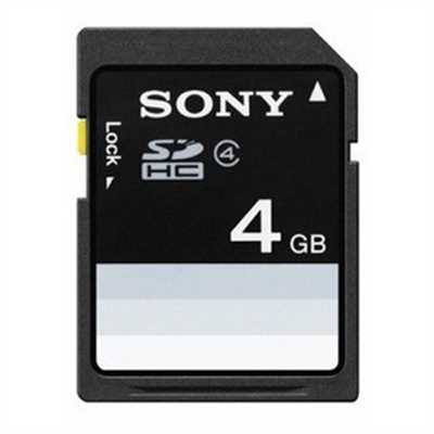 Sony 4 GB Flash Memory Card SF4N4/TQ (Black)