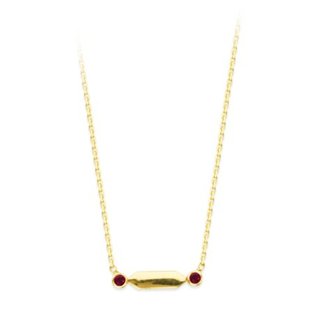 Gold Ruby Bag (14k Yellow Gold and Ruby Bar Design Necklace)