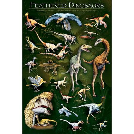Feathered Dinosaurs I Educational Chart (Dinosaurs Size Chart)