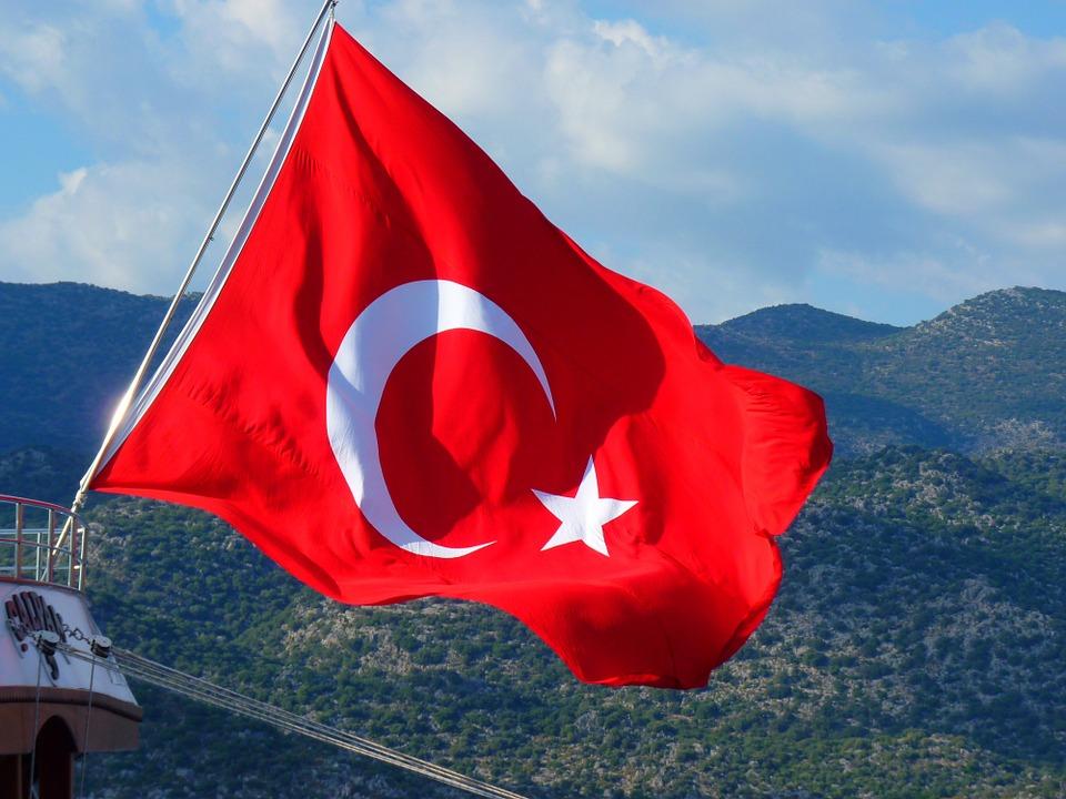 Turkey 12x18in Stick Flag Turkish Flag Turkish People Support Turkey