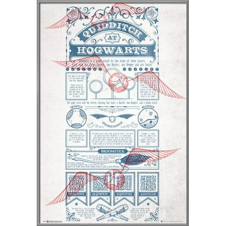 Quidditch Regeln
