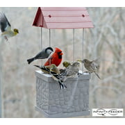 Wild Bird Feeder by Infinity Feeders for Patio, Backyard, Home & Garden Perfect for All Wild Birds