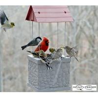 Infinity Bird Feeder - Wild Bird Feeder with 360 Degree View of Feeding Birds