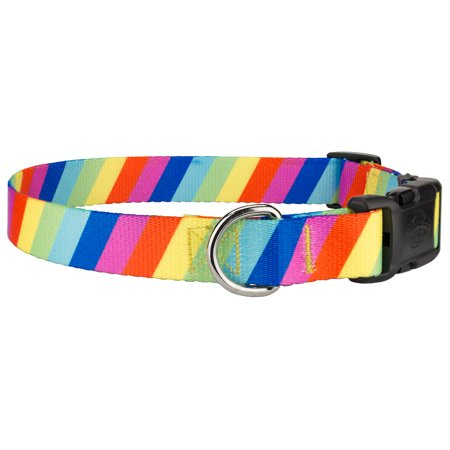 Country Brook Design® Rainbow Stripes Deluxe Dog Collar - Rainbow Dog
