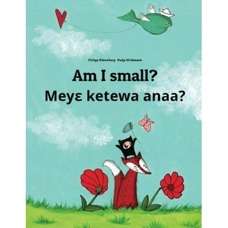 Am I Small  Meye Ketewa Anaa   Childrens Picture Book English Akan  Bilingual Edition