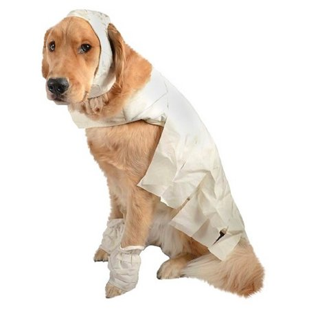 Mummy Dog Pet Halloween Costume Small by, Size: Small By Target Ship from US - Halloween Food Mummy Dogs
