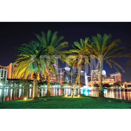 Orlando Downtown Skyline Panorama over Lake Eola at Night with Urban Skyscrapers, Tropic Palm Tree Print Wall Art By Songquan - Orlando Halloween Downtown