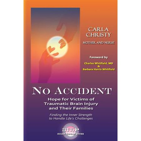 No Accident : Hope for Victims of Traumatic Brain Injury and Their (3 Parts Of The Brain And Their Functions)