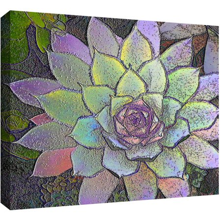 Dean Uhlinger  Arco Iris Suculento  Gallery Wrapped Canvas