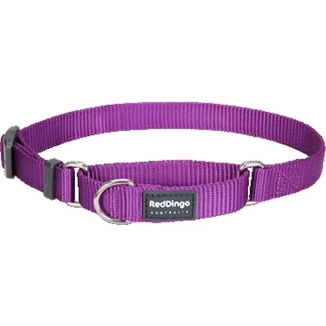 Red Dingo MC-ZZ-PU-SM Martingale Dog Collar Classic Purple, Small