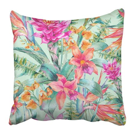 BPBOP Watercolor Vintage Floral Tropical Exotic Flowers Bird of Paradise Twigs and Leaves Botanical Pillowcase 18x18 inch