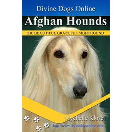 Afghan Hound - eBook