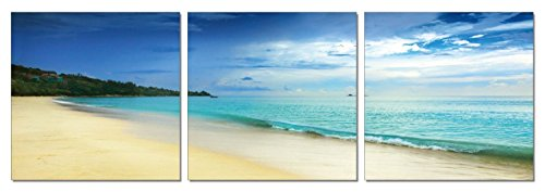 Click here to buy SLS Vision. Paradise Cove. 48 x 16 inches. Ready to Hang. Contemporary Art Modern Wall Decor, 3 Panel Commercial Grade... by SLS Vision.