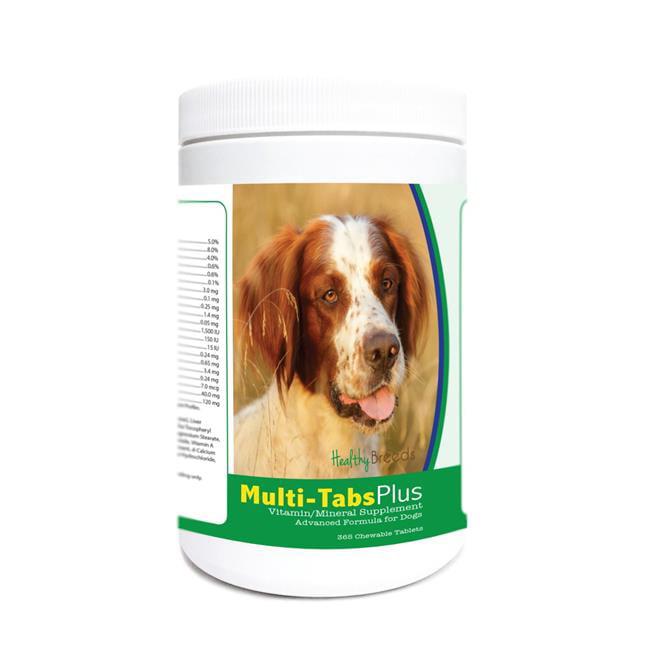 Healthy Breeds 840235175070 Irish Red & White Setter Multi ...