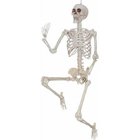 Halloween Decoration: 5' Pose and Hold Skeleton - image 1 de 1