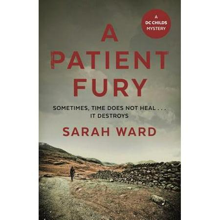 A Patient Fury - eBook