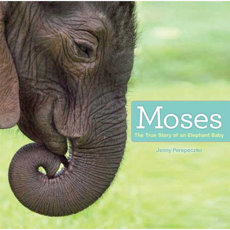 Fair Trade Elephant - Moses : The True Story of an Elephant Baby