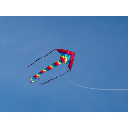 LAMINATED POSTER Sky Kite Dragon Wind Toys Colorful Dragon Rising Poster Print 24 x (Best Light Wind Kite 2019)