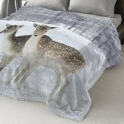 Maison Condelle Lauren Taylor Polyester Blanket