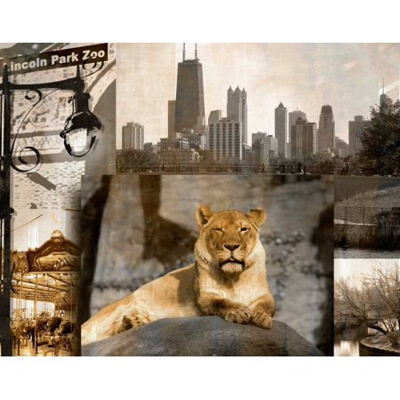 Lincoln Park Zoo Poster Print by Kelly - Lincoln Park Zoo
