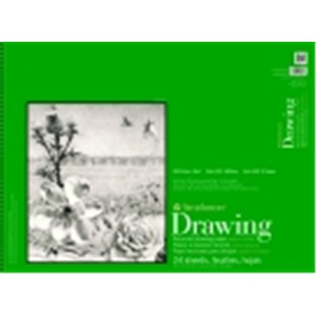 Strathmore 18 x 24 in. 30 Percent Post Consumer Fiber Wire Binding Acid-Free Recycled Drawing Pad, 24