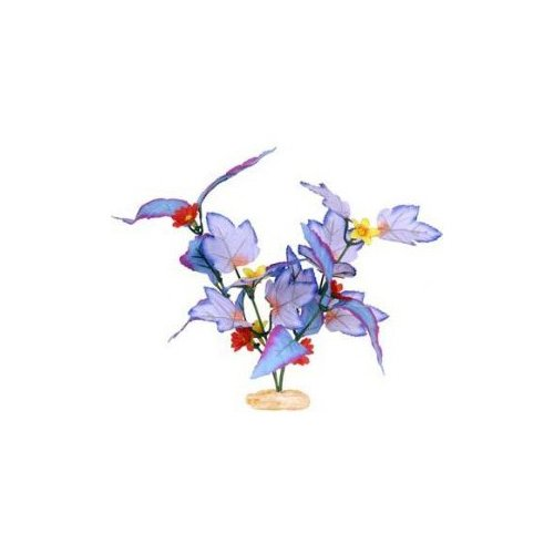 Blue Ribbon Pet Small Flowering Broad Leaf Cluster in Blue