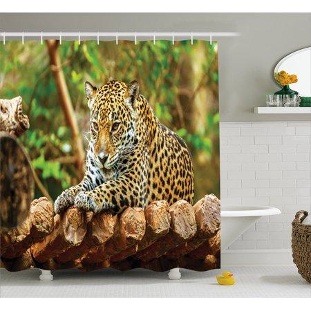 Zoo Shower Curtain  Jaguar On Wood Floor Wildlife Animals Feline Big Cat Mammal Predator Resting  Fabric Bathroom Set With Hooks  69W X 75L Inches Long  Green Yellow Brown  By Ambesonne