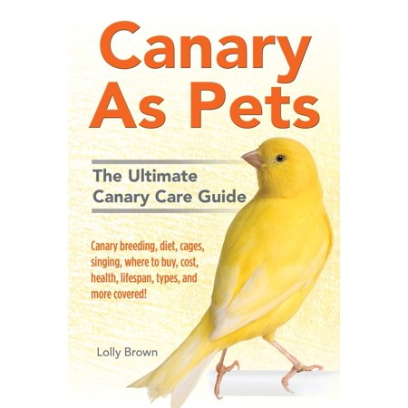 Canary As Pets : Canary breeding, diet, cages, singing, where to buy, cost, health, lifespan, types, and more covered! The Ultimate Canary Care Guide ()