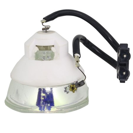 Lutema Economy Bulb for Panasonic PT-DZ870LWE Projector (Lamp with Housing) - image 1 of 5