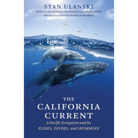 The California Current  A Pacific Ecosystem And Its Fliers  Divers  And Swimmers