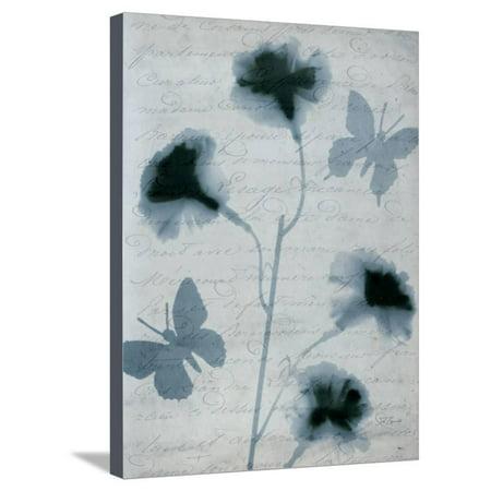Beauty of Light Blue 3 Stretched Canvas Print Wall Art By Dan Zamudio
