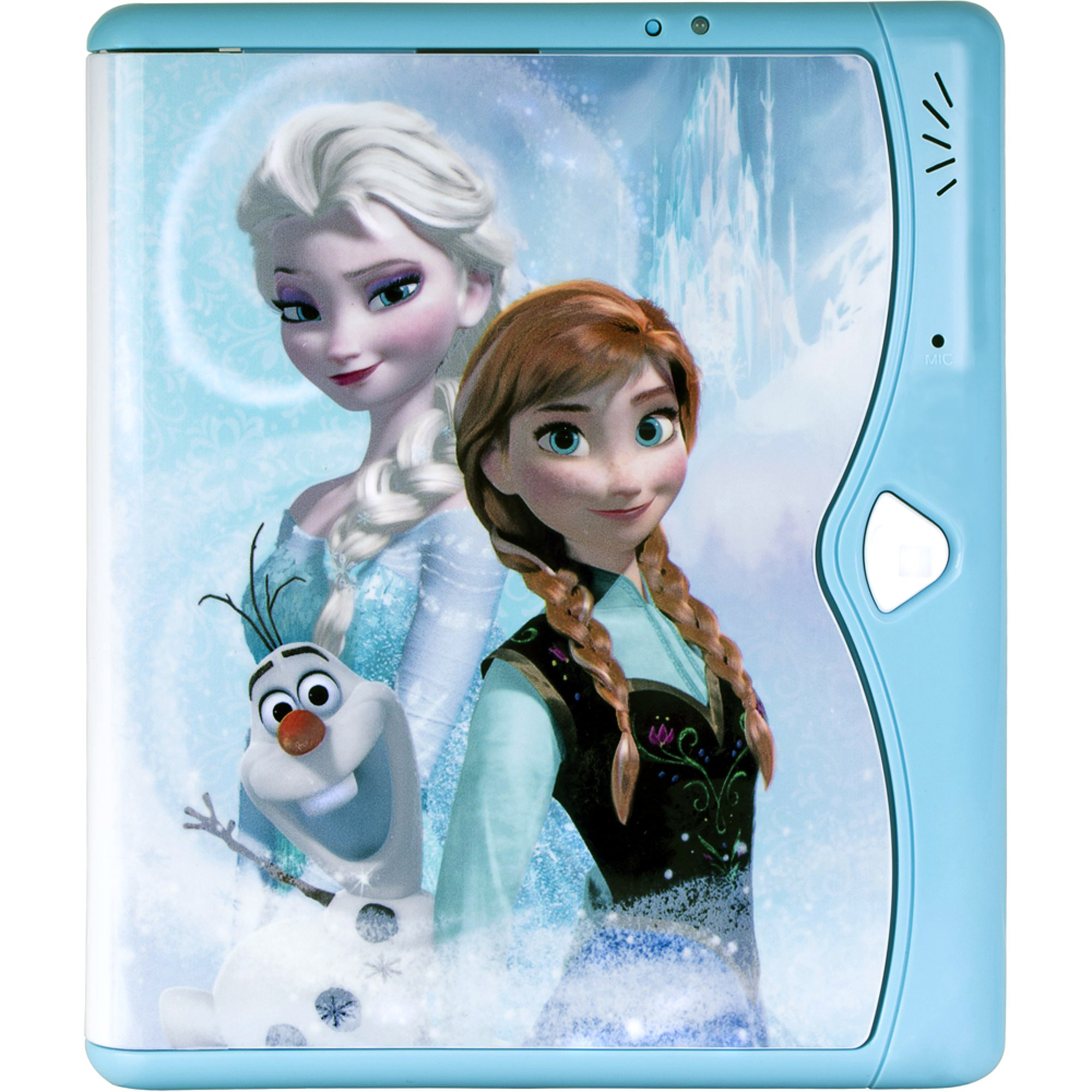 Frozen Password Diary Holder