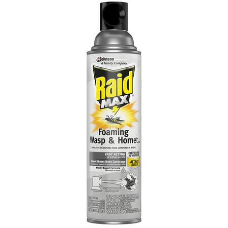Bee Wasp Spray (Raid Max Foaming Wasp and Hornet Killer, 13 oz (1 ct))