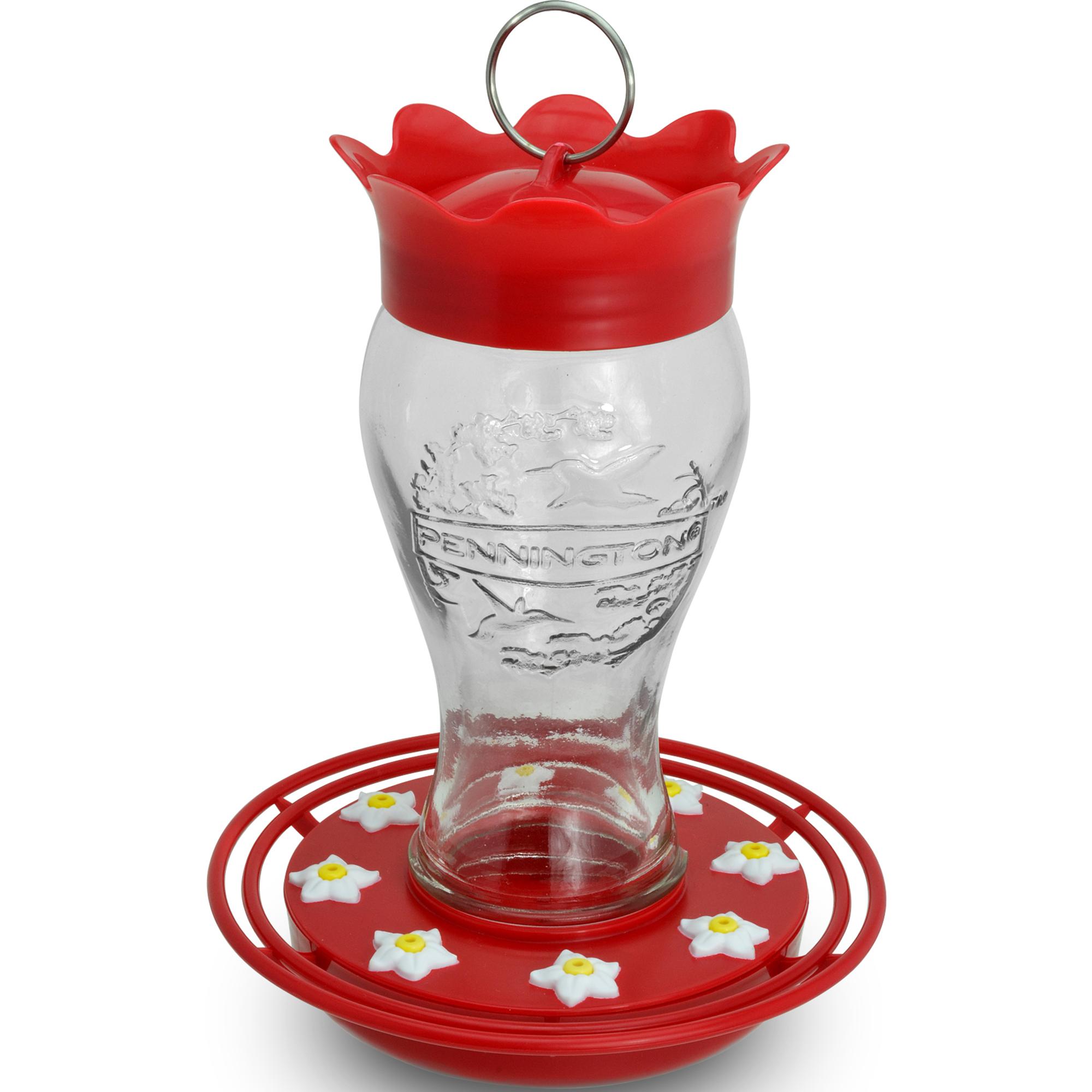 amazon gallon one com hummingbird best dp feeder oz beauty