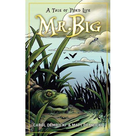 Mr. Big : A Tale of Pond Life